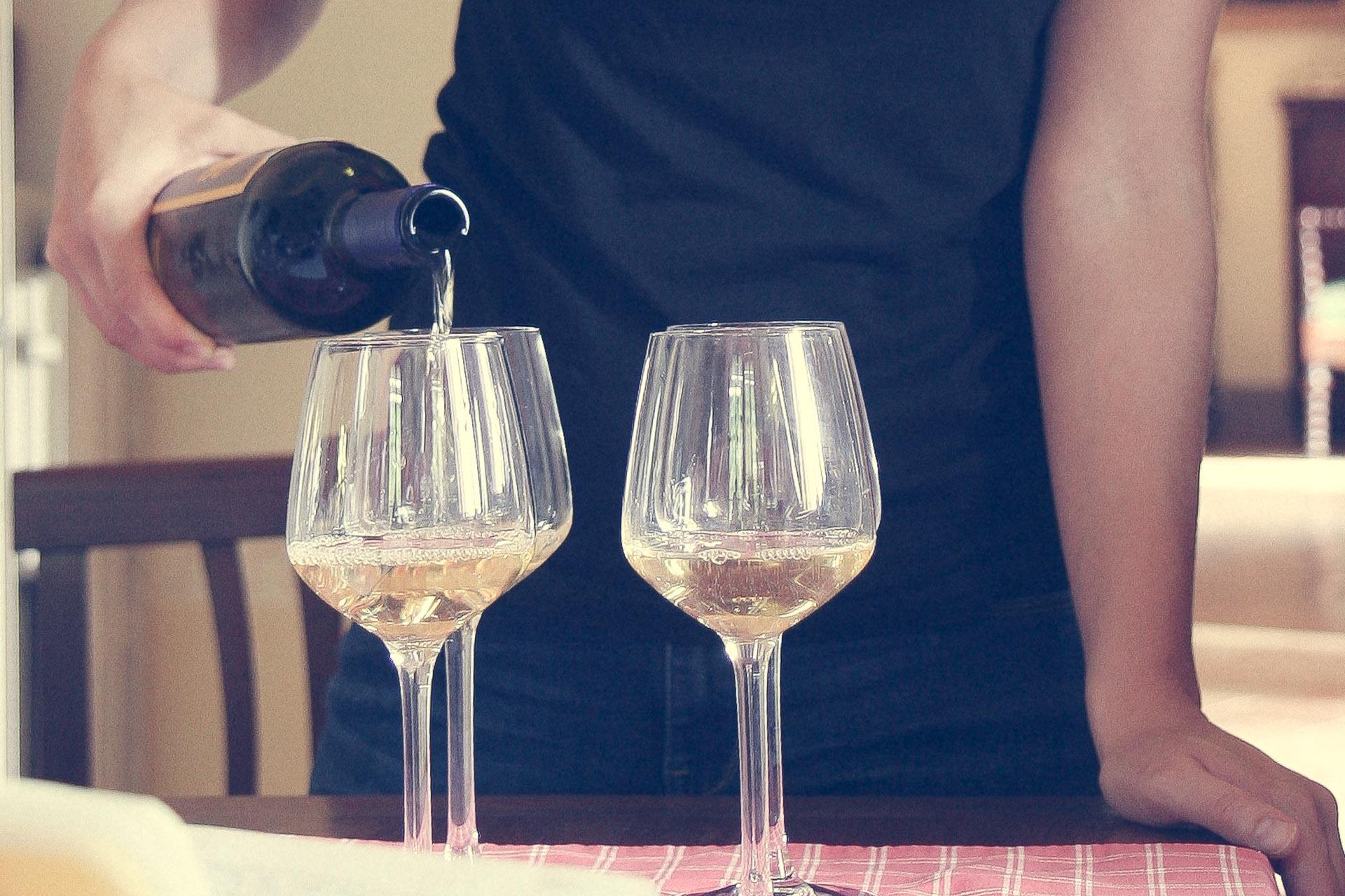 tenuta di spannocchia-vino-8